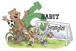 7 Habits 6 Synergize