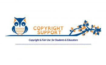 Logo for Copyright Support page from NCWiseOwl