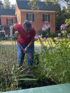 A woman with a hoe in a flower bed.
