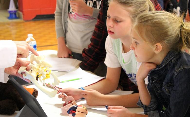 Students looking at bone models