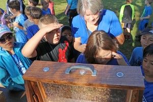 Students look for queen bee in hive